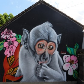 %22no-monkey-business%22-bali-indonesia-2016-1